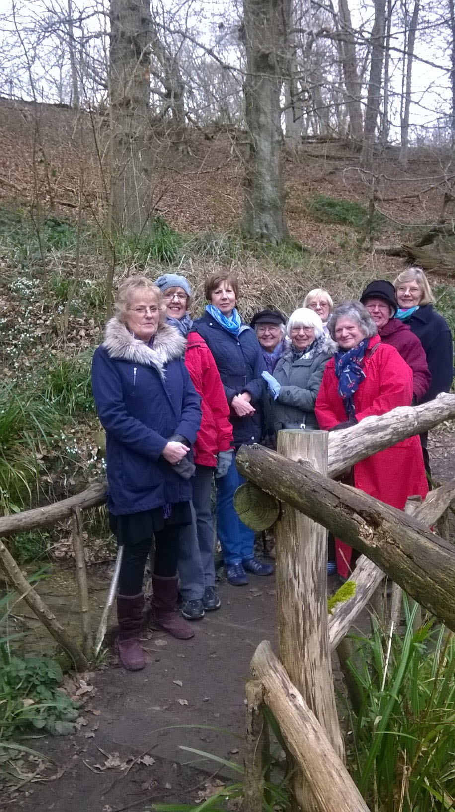 Visit to Brockhill to see snowdrops