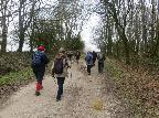 Walking up to Chanctonbury Ring Feb 2016