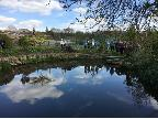 Malthouse Farm - the pond