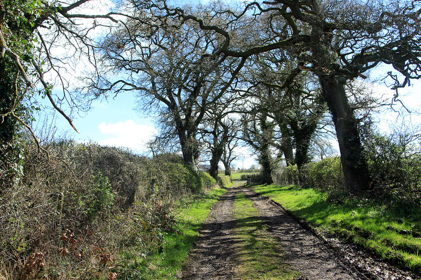 Pathways of Cumbria - Nanny knoc abouts