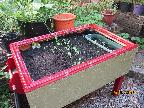 A Planter, made by Jim for Sue