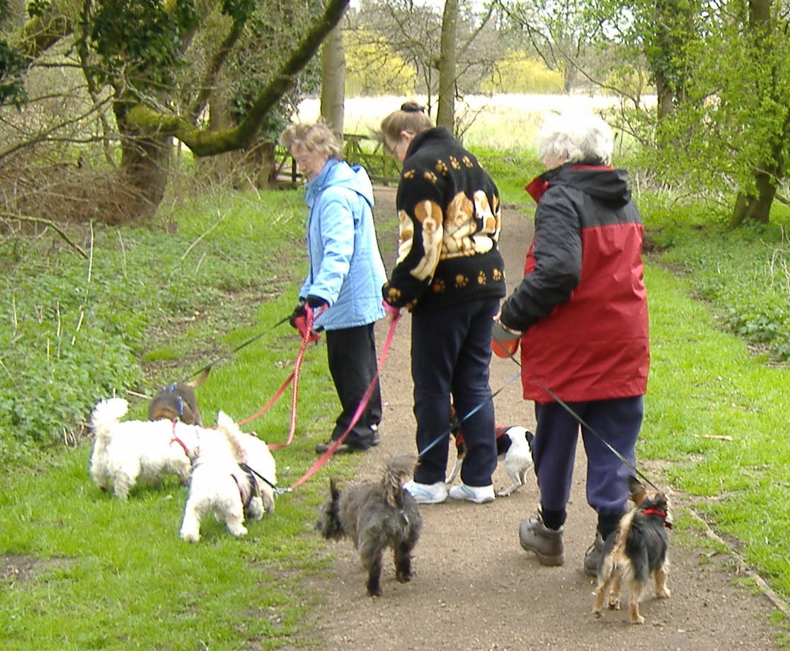 Dog walkers on the new BTO river path