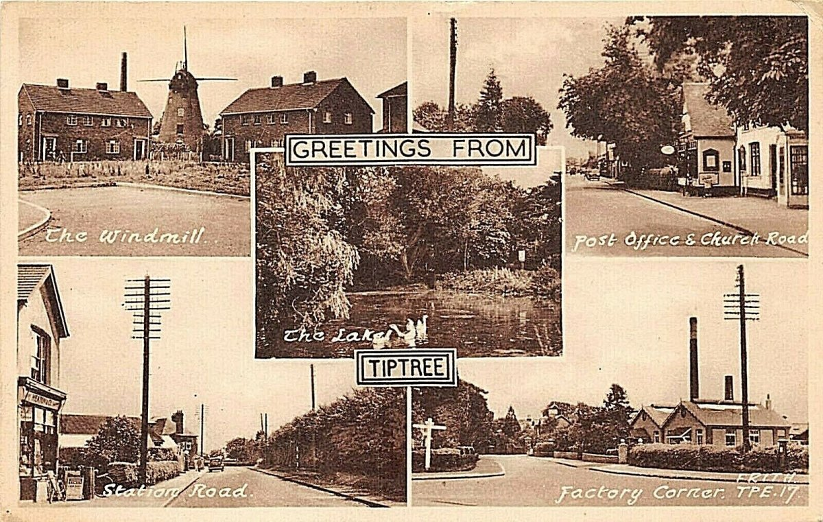 Tiptree postcard