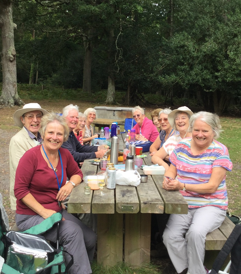 Lunchtime Picnic in the New Forest