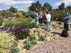 Gardening Group at Hyde Hall