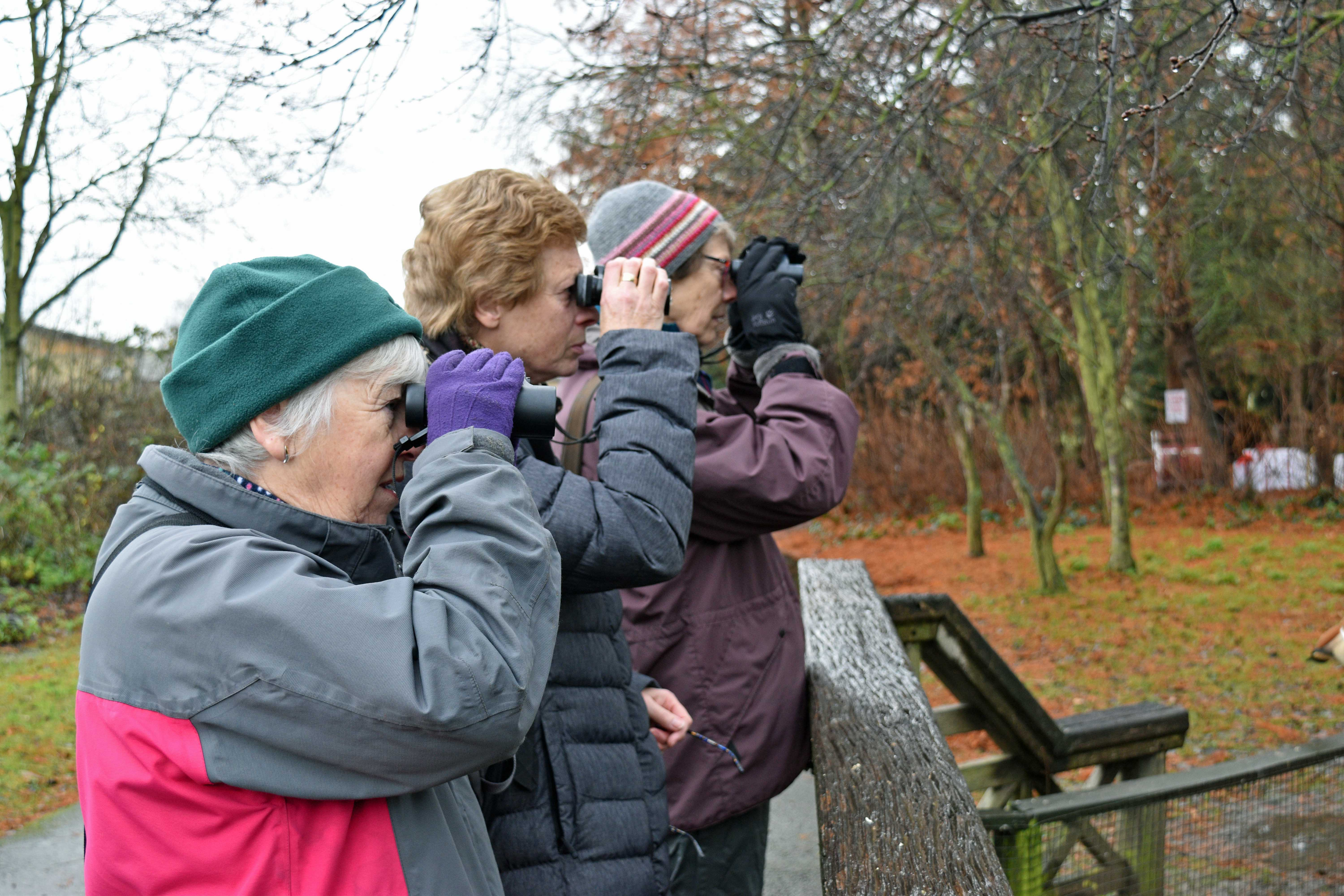 Three go birding.
