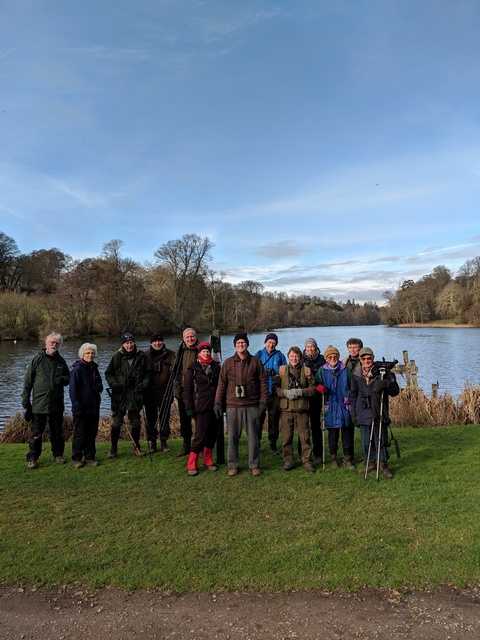 Birders at Fonthill