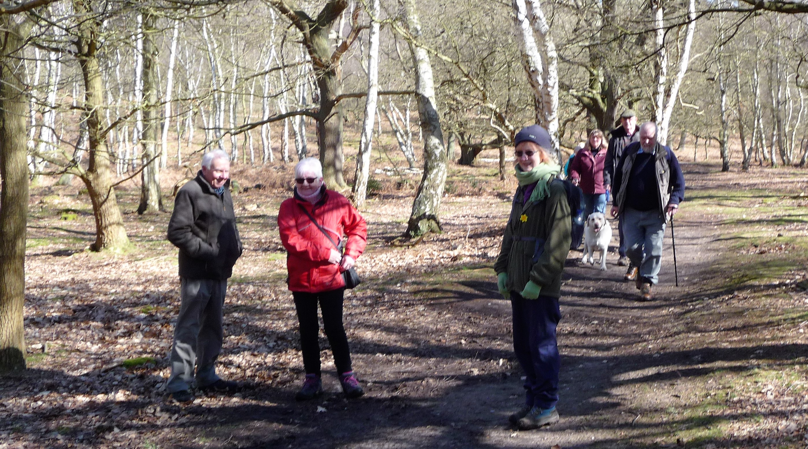 Walking Group in Sherwood Forest 5/4/18