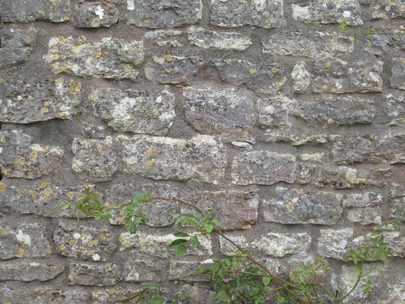 Blue lias house wall