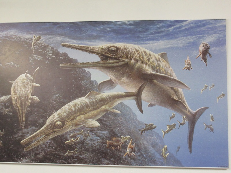 Artists impression of Jurassic seas