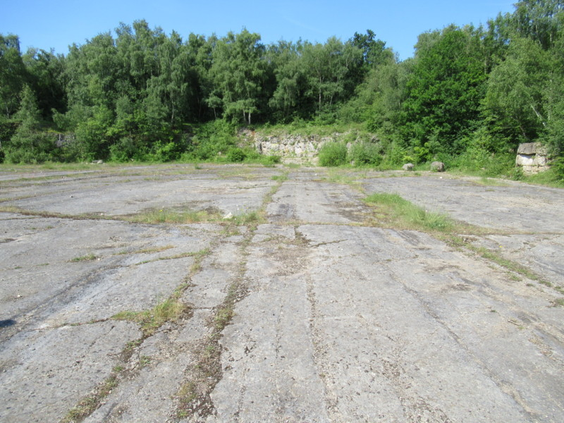Tedbury Camp Quarry