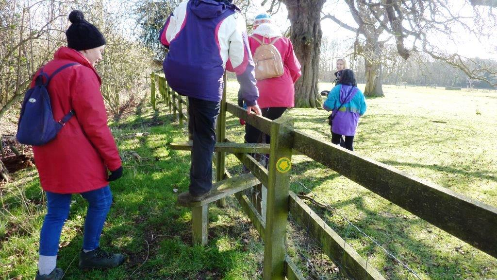 Crossing the stile!