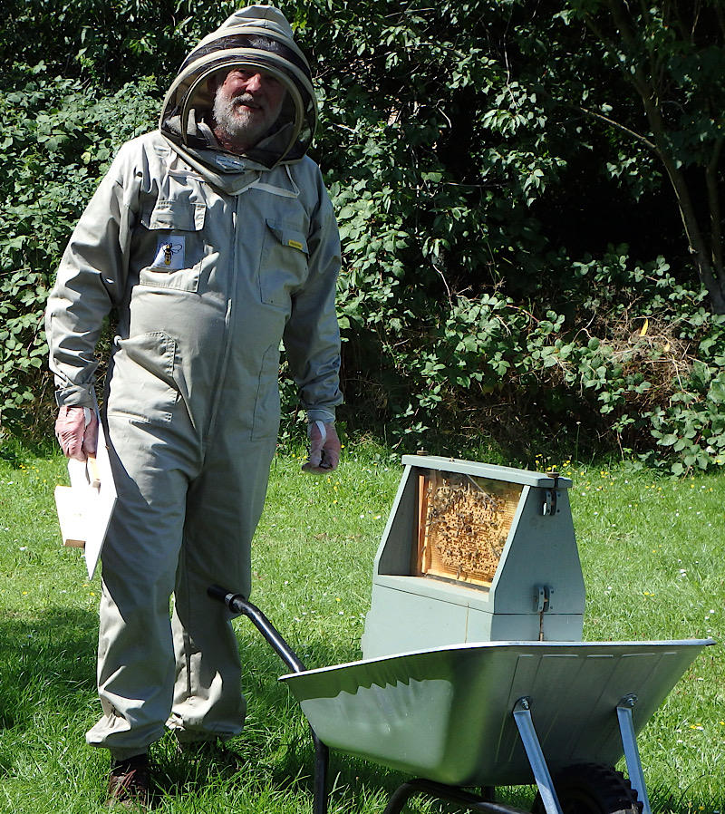Andy and his bees