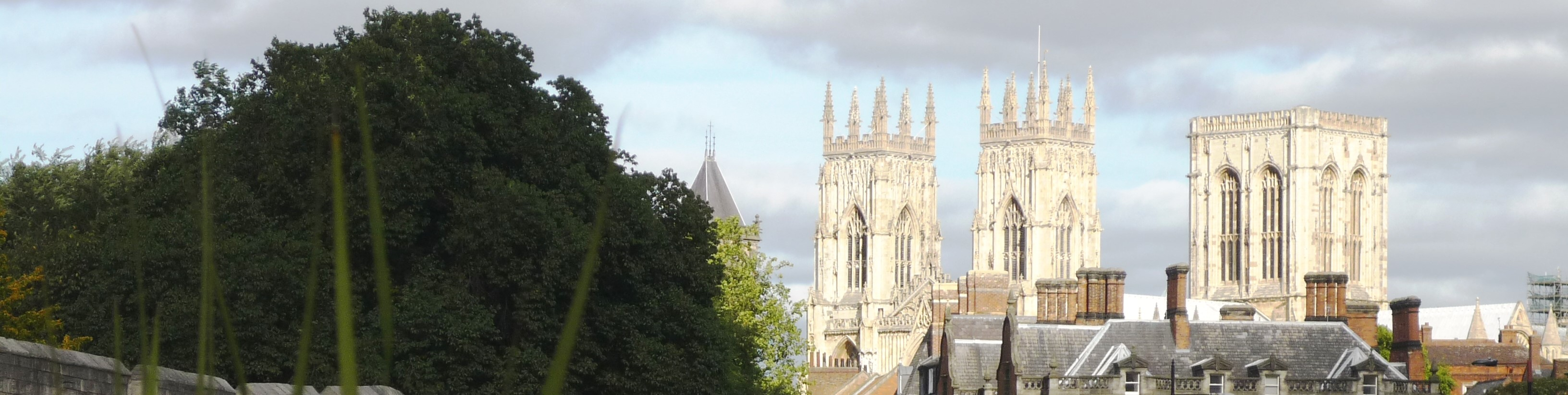 Welcome to the Website of York U3A